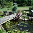 Um lago é um habitat para muitas espécies. Além de bonito, trará diversidade biológica. Para quem tem um espaço, o lago se torna uma decoração e proporciona um ambiente agradável. […]
